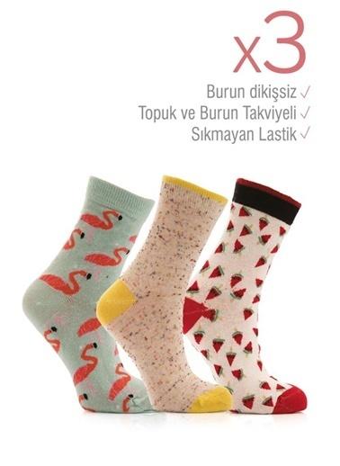 Miorre 3'lü  Burnu Dikişsiz Kadın Soket Çorap Renkli